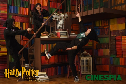 Harry-Potter-2-0482