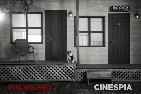 Psycho-0169
