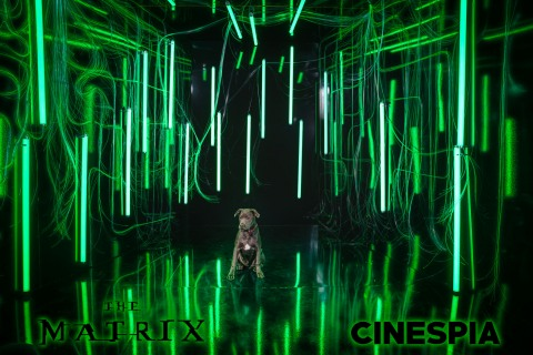 The Matrix - 0508