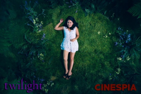 Twilight0244