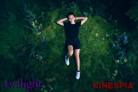Twilight0311