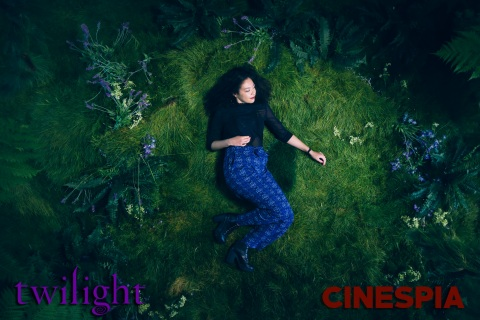 Twilight0585