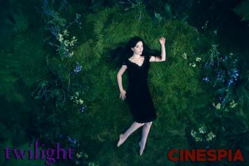 Twilight0085