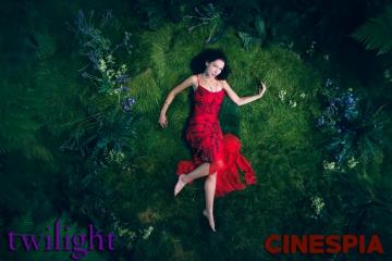 Twilight0474