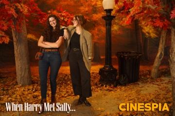 When-Harry-Met-Sally-0420